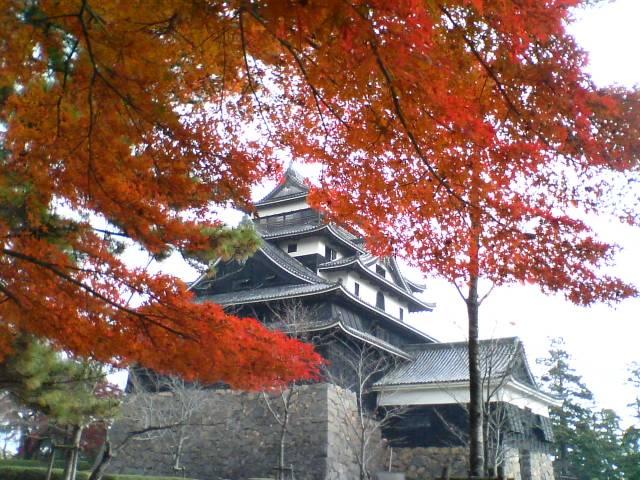 紅葉の松江城