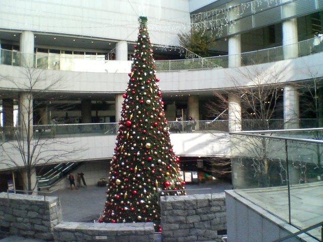 新宿オペラシティのクリスマスツリー